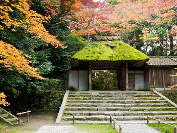 Ginkaku-ji (Higashiyama Jisho-ji) and Tetsugaku No Michi (The Philosopher's Path)