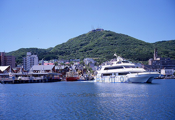 Bay cruise in Hakodate Bay area with grilled seafood at seafood market