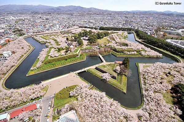 【旬花】Shunka / 毋需佔位,就能在賞櫻名勝五稜郭公園內,享受當季美景與日式便當之賞櫻方案 期間限定!4月下旬~5月中旬