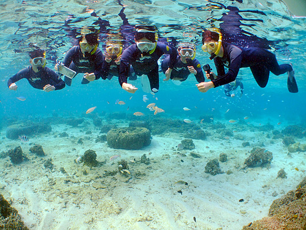 Blue Cave Snorkeling & In-Reef Diving Tour