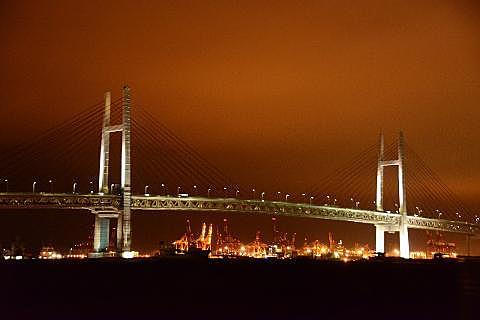 Yokohama and factory night view cruise tour