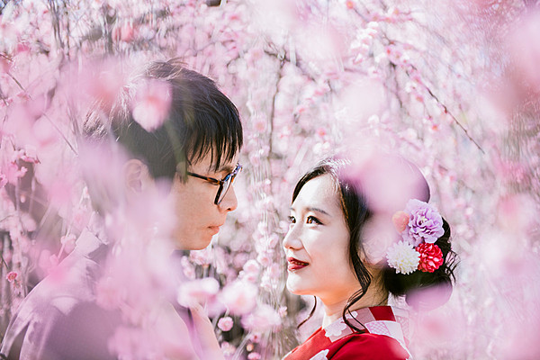櫻花主題的攝影方案