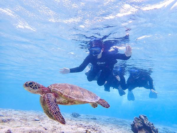 【宮古島】觀賞海龜&前往南瓜鐘乳石洞探險!龍宮城組合