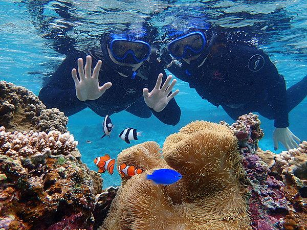 【沖繩・宮古島】在宮古島的大海中暢快遊玩!體驗槳板/獨木舟&浮潛體驗!【免費照片檔案】