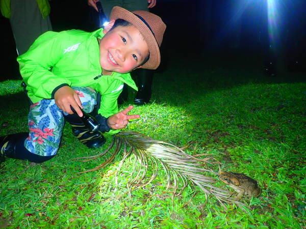 【西表島】天然的天文館!探索亞熱帶&星空的夜晚叢林行程