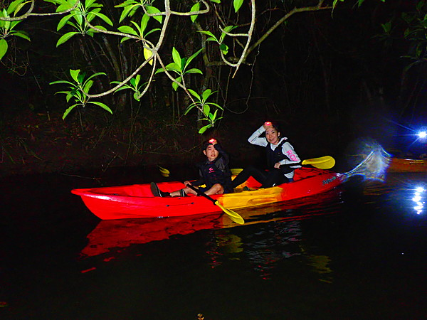 [Okinawa, Iriomote Island] [Night] Itching for a great adventure? New Experience Night Mangrove & Starry Sky SUP or Canoe [Free Photo Data]