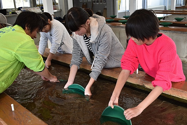 Find Gold and Make Accessories at Sado Nishimikawa Gold Park (Round-Trip Jetfoil)