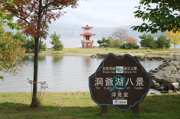 【洞爺湖、登別、白老】出租觀光的士暢遊各景點!7小時行程