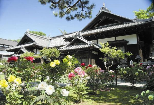 【札幌、小樽】包下觀光計程車暢遊各景點!5小時行程