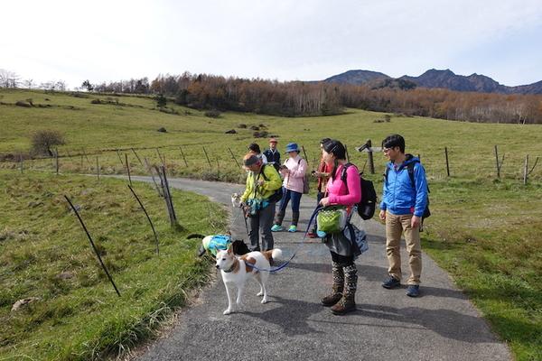 愛犬と歩く!牧場周遊トレッキング