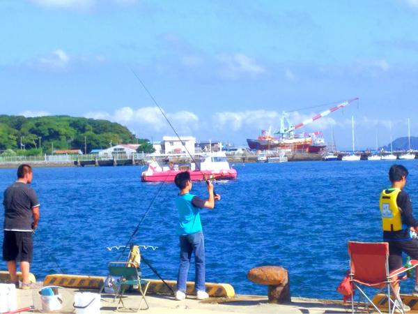 【千葉 館山・90分コース】手ぶらでOK!レンタル釣り竿で海釣り体験!