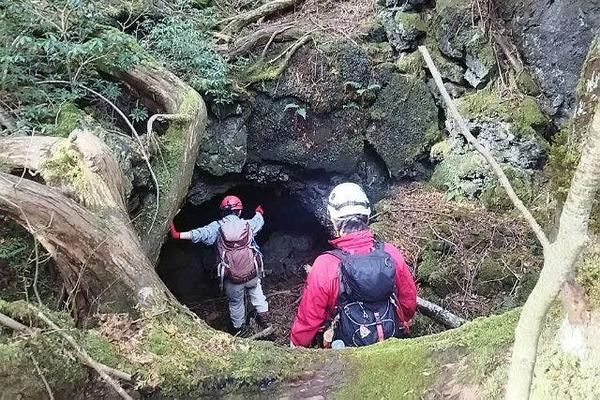 青木ヶ原樹海&洞窟で大冒険!ガイドと行く神秘的な自然体験