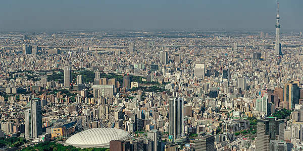 Tokyo Bay Helicopter Thrill, Rich Plan, Sky Tree & Ginza, 20 minutes